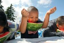 Alex Antoni,7, of Keyport has a unique way to not use his hands during the watermelon eating contest at the Keyport Independence Day festivities Thursday, July 4, 2013. (AP Photo/Kitsap Sun, Larry Steagall)