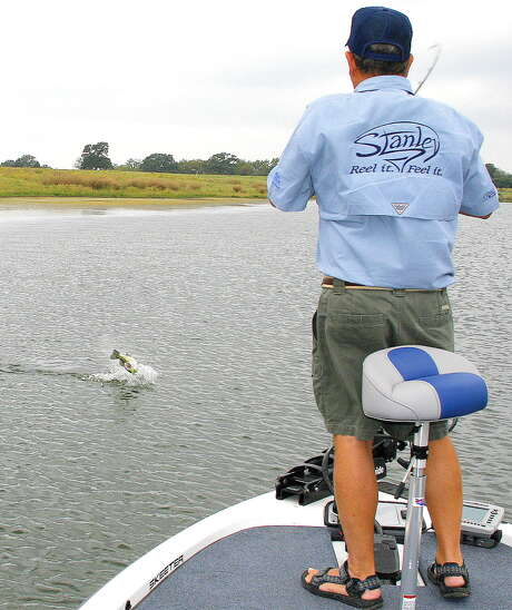 Angler and lure maker Lonnie Stanley fights a largemouth bass that slammed one of his soft-plastic Ribbit frog lures worked over the thick vegetation. Photo: Picasa