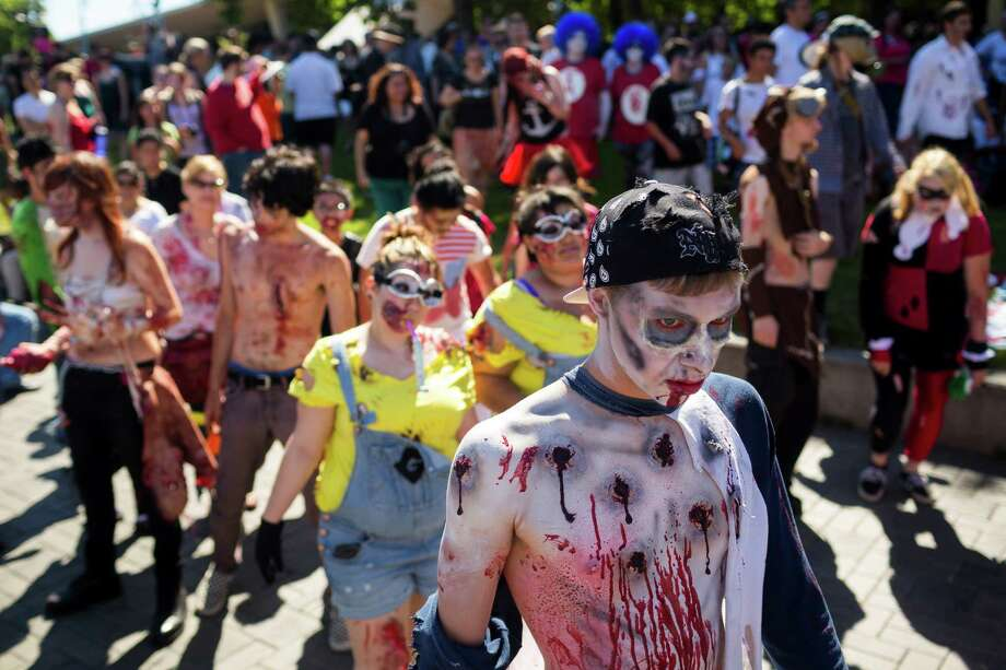 A mass of human-hungry walkers approach the International Fountain during the fifth annual Red, White and Dead Zombie Walk Saturday, July 6, 2013, around the Seattle Center in Seattle. This year, the horde relocated from their long-time Fremont location to the larger Seattle Center to accommodate more roaming, undead bodies. Photo: JORDAN STEAD, SEATTLEPI.COM / SEATTLEPI.COM