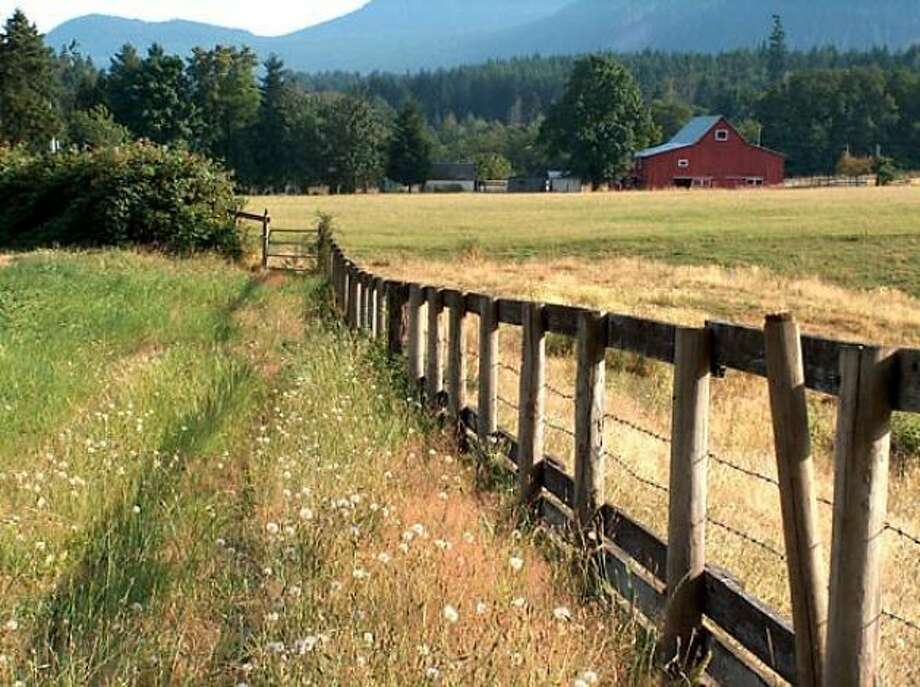 Fields in Glenora, Cowichan, B.C.