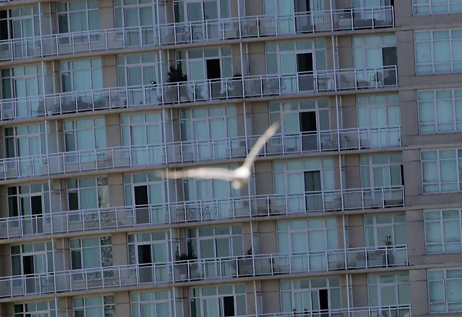 A gull flies by a building near Lake Merritt in Oakland, which wants to prevent birds from hitting structures. Photo: Carlos Avila Gonzalez, The Chronicle