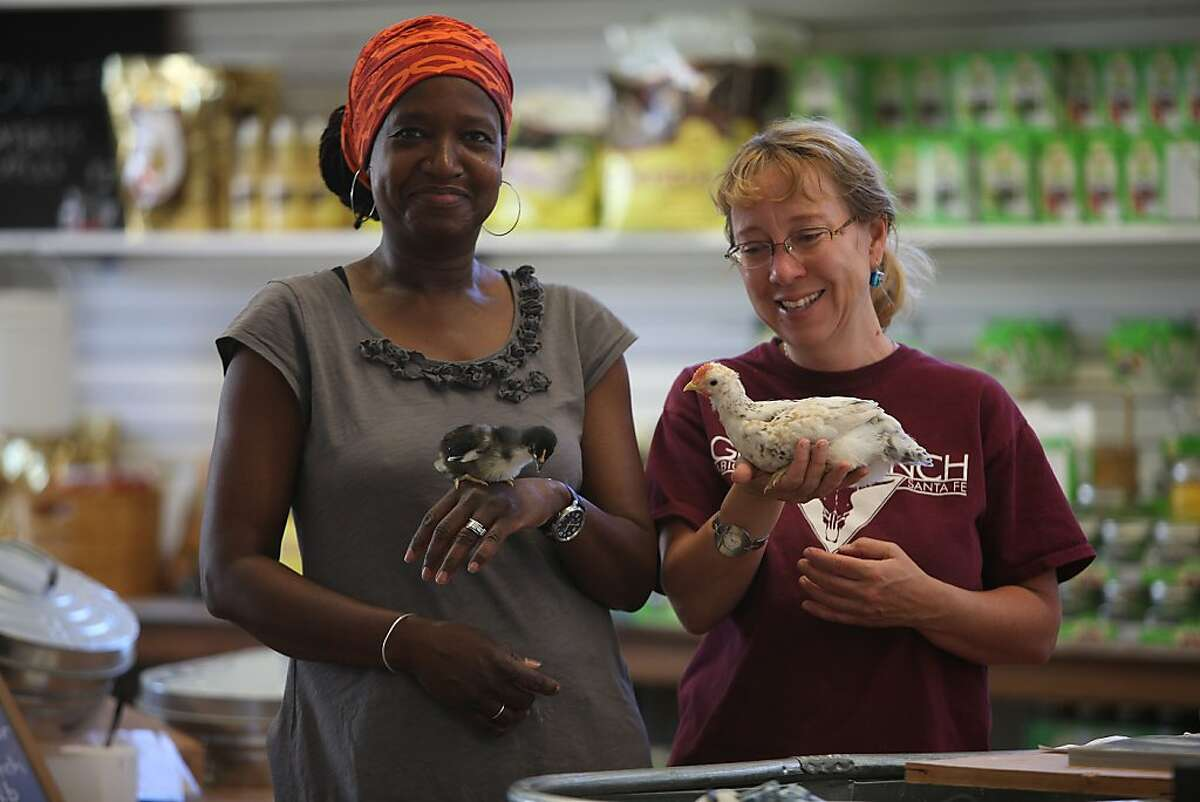 Owners Yolanda Burrell (left) carrying a Black Copper Marrans and Birgitt Evans (right) carrying a Marraduna Basque, heritage breed chicks at the new urban farm store Pollinate in Oakland, Calif., on Friday, May 31, 2013.