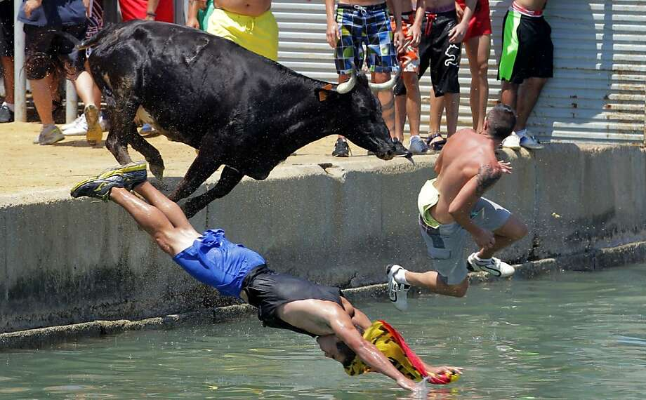 Hope you can swim fast:The traditional running of the Bous a la mar (Bull in the sea) ends with human runners leaping into 