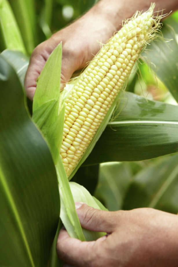 Grilled corn is a quick veggie option. Photo: Smith Collection, Getty Images / (c) Smith Collection