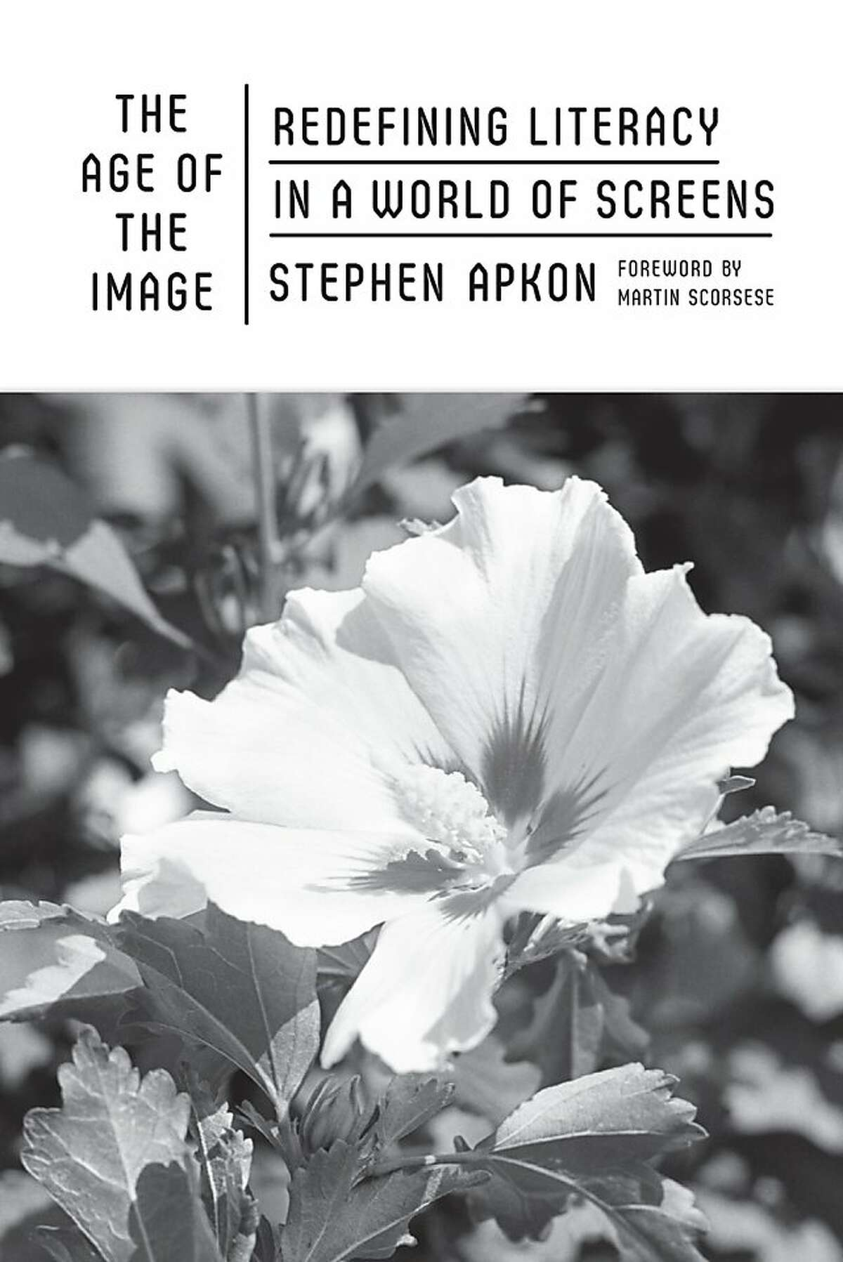 The Age of the Image: Redefining Literacy in a World of Screens, by Stephen Apkon