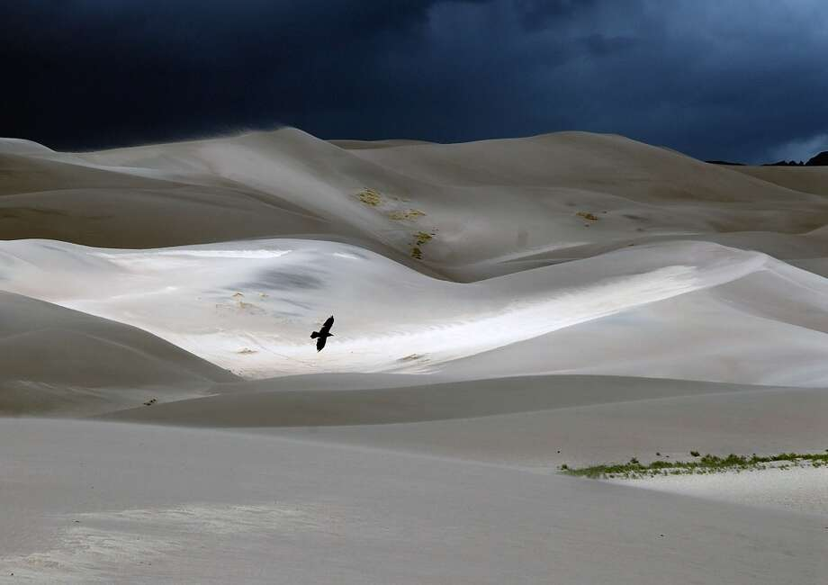 Try out sandboarding and sand sledding  and at Great Sand Dunes National Park (Colorado). Photo: Bill Keaton
