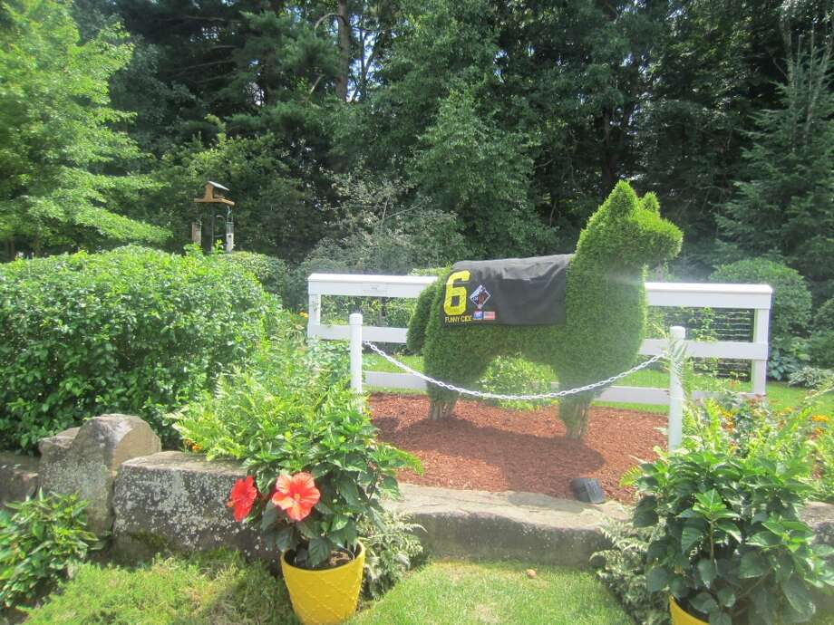 A house in the Summer Wind development on Lake Lonely had a hedge in the shape of horse wearing a Funny Cide saddle blanket.