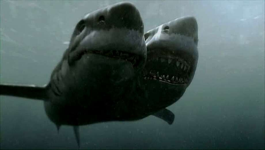 """2-Headed Shark Attack"" (2012) because twice the heads, twice the terror."