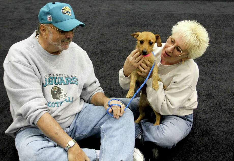 This Dec. 11, 2012 photo provided by MGM Resorts International shows MGM Grand poker dealer Dar Reike holds her adopted dog, Alexia, next to her husband, Rick Reike. They adopted the dog, at a company adoption fair last year. However, they decided against getting pet insurance. Through MGM Resorts International, they could have gotten a major medical policy for $25 to $35 a month. With one dog, she would have also gotten a 5 percent discount. Photo: MGM Resorts International, Victoria Gonzalez