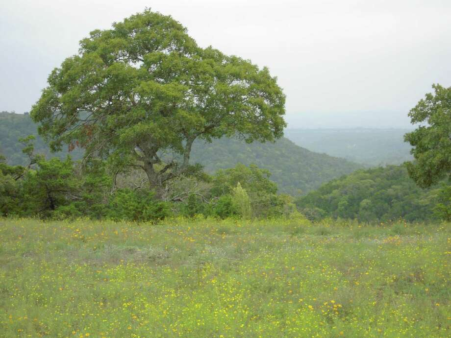 Ranches of Brushy Top offers 5- to 75-acre homesites.