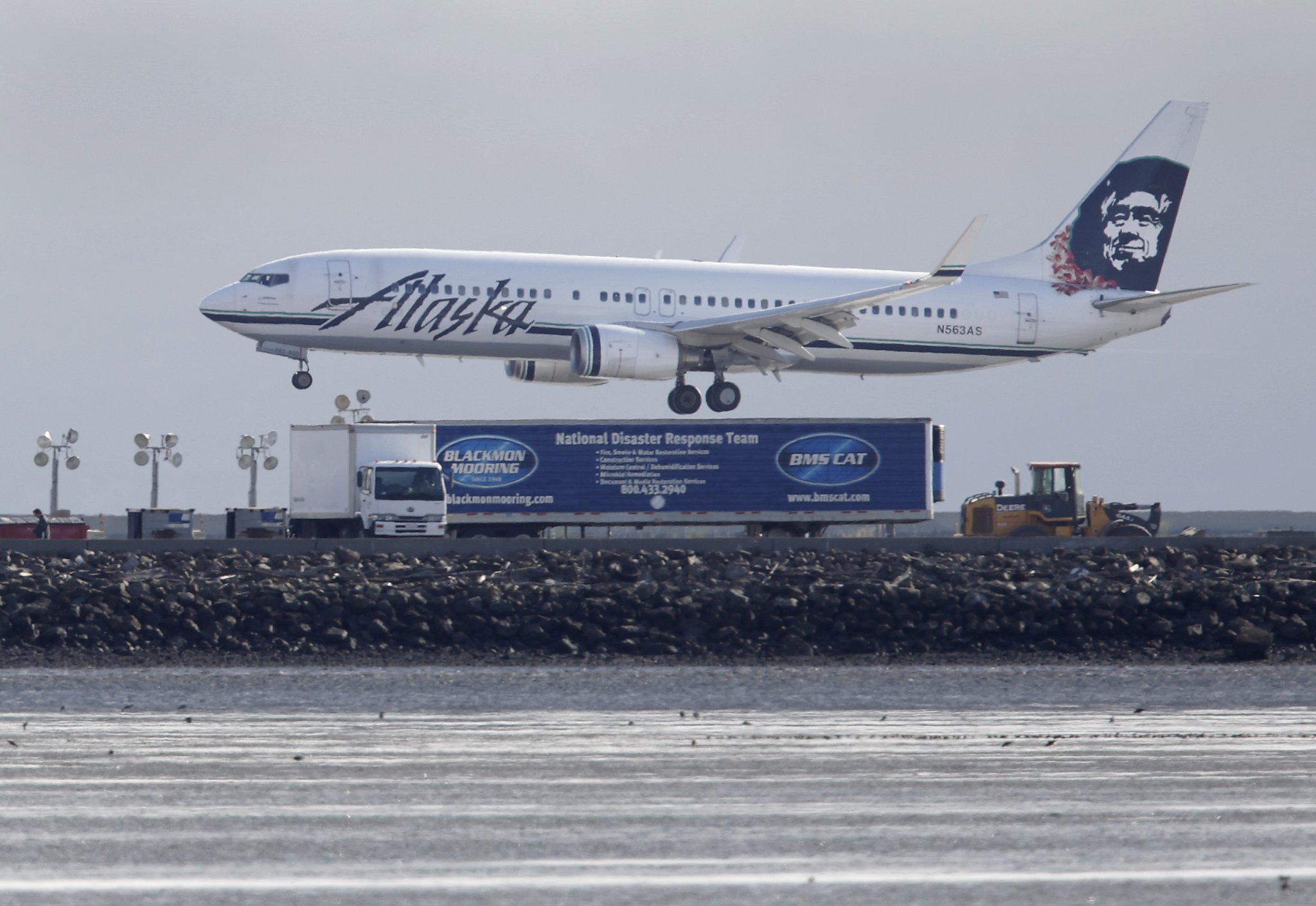 Alaska Airlines Plane Kills Deer While Landing In Santa
