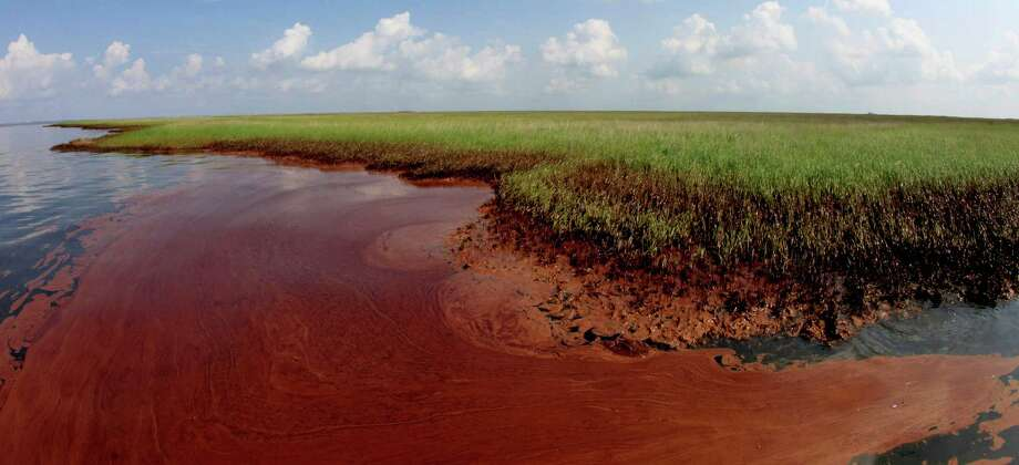 Oil from the Deepwater Horizon spill pools against the Louisiana coast along Barataria Bay Tuesday, June 8, 2010. (AP Photo/Charlie Riedel) Photo: Charlie Riedel, STF / AP