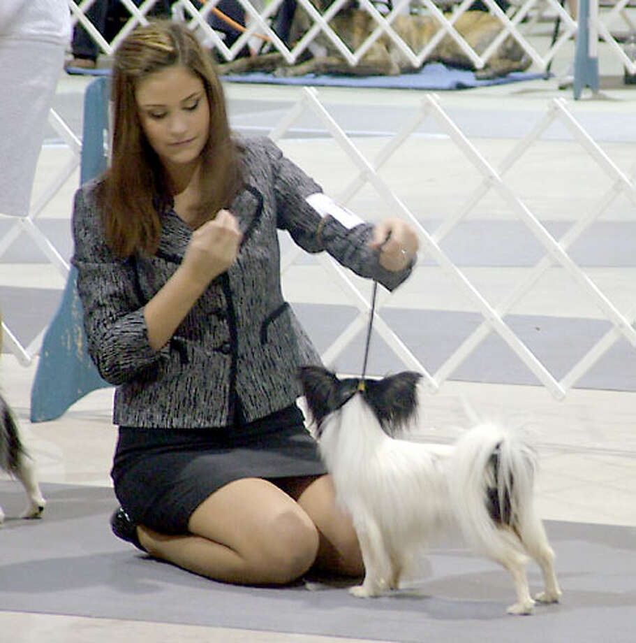 River City Cluster of Dog Shows at the Exposition Hall on the grounds of the Freeman Coliseum, July 13, 2013 Photo: Pam Howell