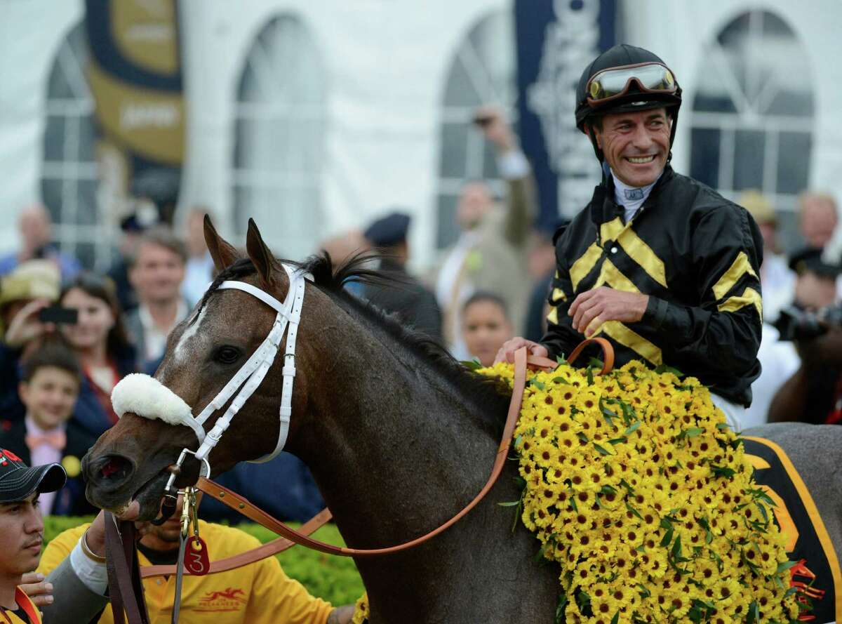 Oxbow ridden by veteran jockey Gary Stevens stands in the winner's circle after winning the 138th running of the Preakness Stakes May 18, 2013 at historic Pimlico Race Course in Baltimore, Maryland. This was the second jewel of the thoroughbred racing's triple crown. Kentucky Derby winner Orb finished fourth. (Skip Dickstein/Times Union)