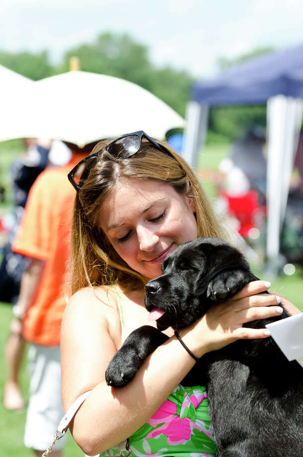 Juliana Pugliese, of Old Greenwich, acquaints herself with a black lab puppy named Tobar at the Educated Canines Assisting with Disabilities (ECAD) tent on the polo club grounds during the first annual Virginia House of Hope charity polo match fundraiser at the Greenwich Polo Club at Conyers Farm on Hurlingham Drive in Greenwich on Sunday, July 14, 2013. Photo: Amy Mortensen / Connecticut Post Freelance