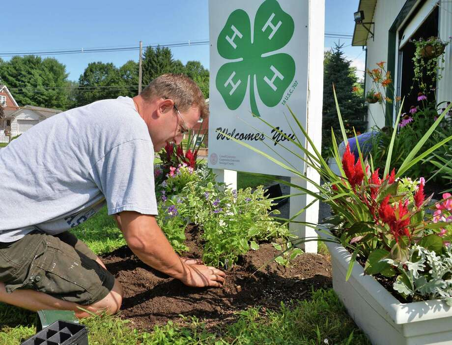 4-H educator Greg Stevens of Porter Corners plants garden flowers Thursday morning, July 11, 2013, at the 4-H building on the Saratoga County Fairgrounds in Ballston Spa, N.Y. The fair opens July 16.  (John Carl D'Annibale / Times Union) Photo: John Carl D'Annibale / 10023108A