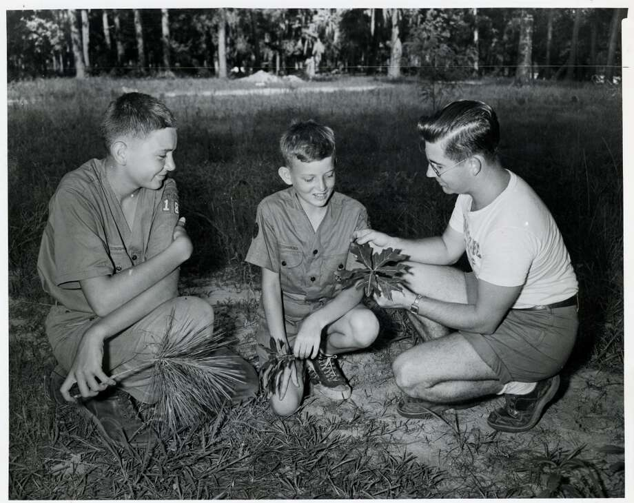 Learning about trees at the camp, (L-R) Robert Miller, 13, holds a loblolly pine; Charles Miller, 13, holds a persimmon leaf; and nature counselor Norman E. Holbrooks, 26, of Bryan shows his two students a Southern red oak leaf in June 1950. Photo: Gunnar Liljequist Jr., Houston Chronicle