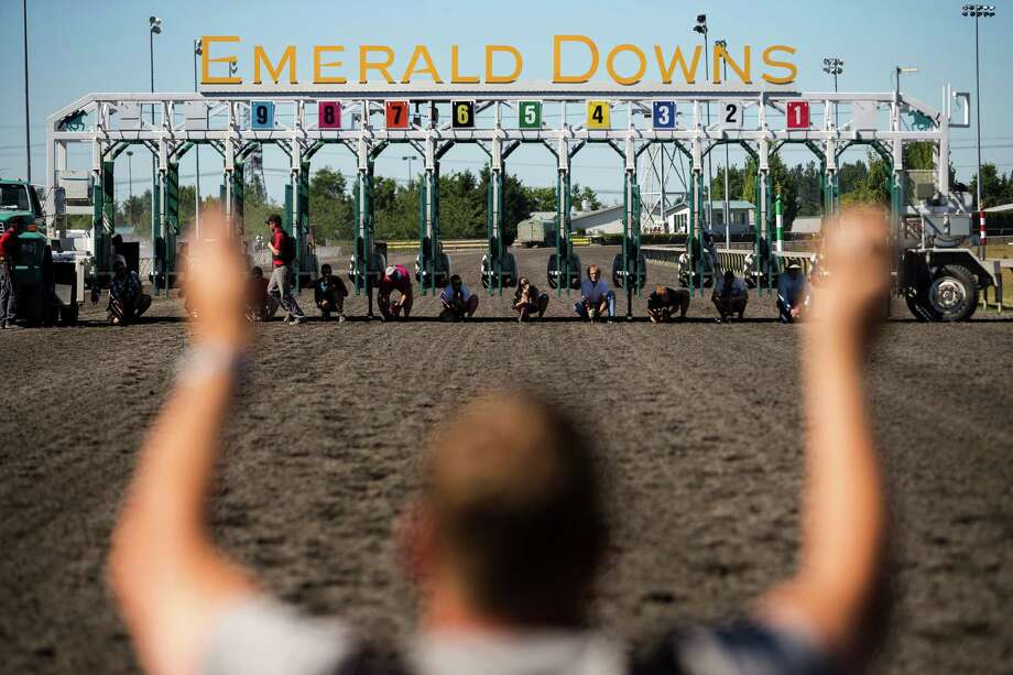 Miniature dachshunds prepare to head down the track track toward their owners during the 17th Annual Kent & Alan Wiener Dog Races Sunday, July 14, 2013, at Emerald Downs in Auburn. Three heats of short-legged competition had crowds cheering and participating dog owners rooting for their own little canine athlete. Photo: JORDAN STEAD, SEATTLEPI.COM / SEATTLEPI.COM