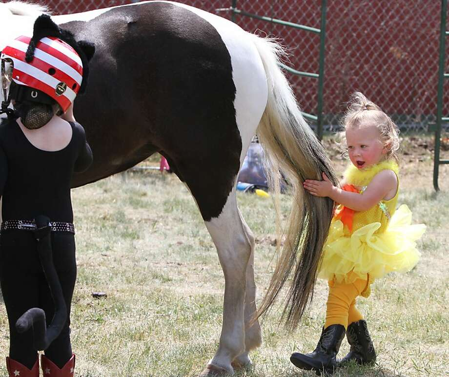 Wrong end, dear: Taylor Kavanaugh tries to lead her mount during the pony costume contest at 