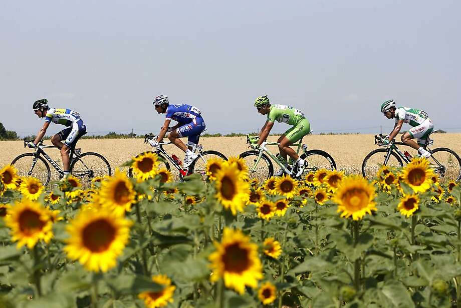 Flower pedals: Tour de France racers break away from the pack during the 15th stage between Givors and Mont Ventoux, France. Photo: Jeff Pachoud, AFP/Getty Images