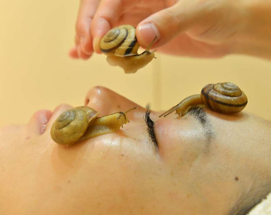 Escargot cult:Snails crawl over the face of a woman during a demonstration of a new beauty 
