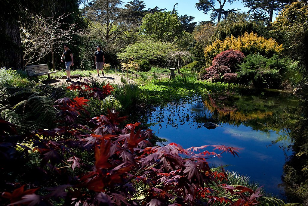 Botanical Garden Fee Isn 39 T Keeping Visitors Away San
