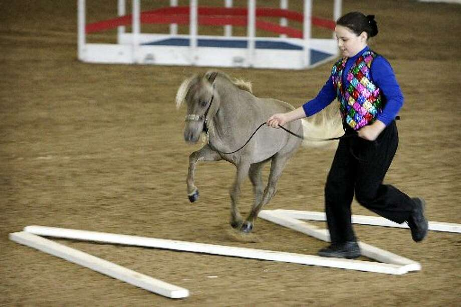 Kaycie Timm, 10, shows her horse in a halter obstacle event at the Galaxy 2008 miniature horse show at the Great Southwest Equestrian Center in Katy.