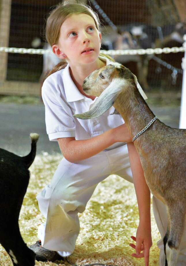 "Eva Sgambettera, 9, of Saratoga shows her goat ""Atalanta"" at the Saratoga County Fair in Ballston Spa, NY Tuesday July 16, 2013.  .(John Carl D'Annibale / Times Union) Photo: John Carl D'Annibale / 00023171A"