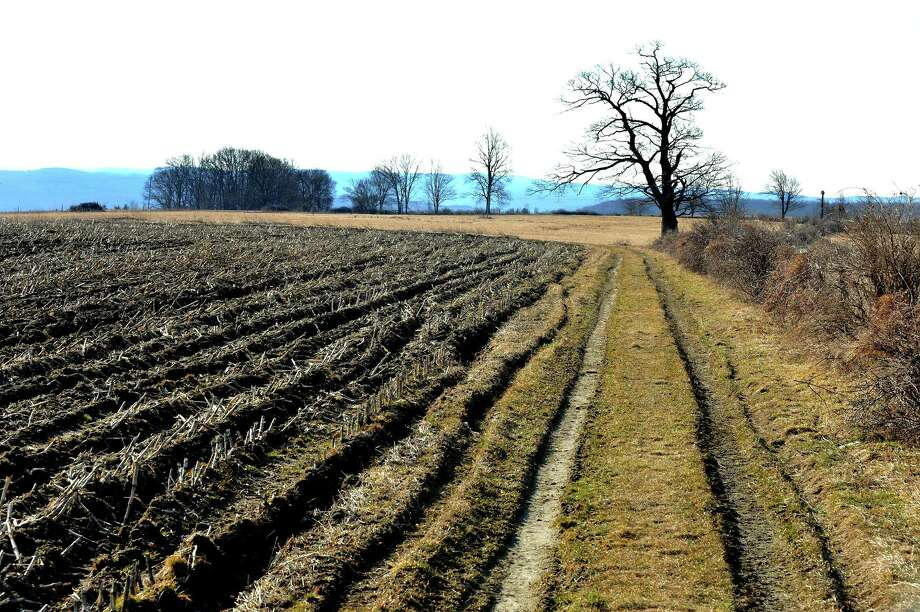 This file photo shows a dirt path leading to farmland that is leased out, which is part of the 300 acres of land on the Southbury Training School property. Photo: Michael Duffy