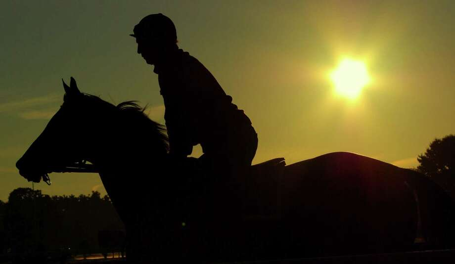 "Winner: ""Silhouette."" Taken at the Saratoga main track at 5:52 a.m., Aug. 19. Photo:  Frank Panucci, Picasa"