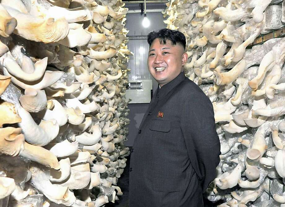 He loves mushrooms - and mushroom clouds: North Korean leader Kim Jong Un almost never smiles 