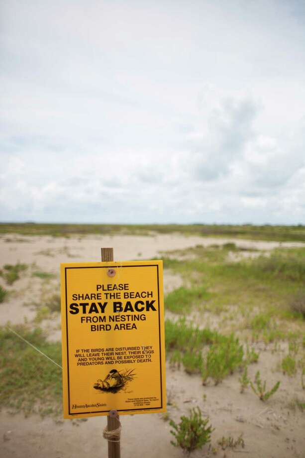 Signs point out private property partially owned and managed by the Houston Audubon Society, Monday, July 15, 2013, on the Bolivar Peninsula. Photo: Nick De La Torre, Houston Chronicle / © 2013  Houston Chronicle