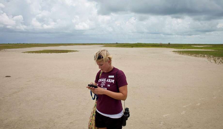 Alex Chapman, a conservation intern, uses a GPS to find nests she's found before at the Houston Audubon Sanctuary, Monday, July 15, 2013, on the Bolivar Peninsula. Photo: Nick De La Torre, Houston Chronicle / © 2013  Houston Chronicle