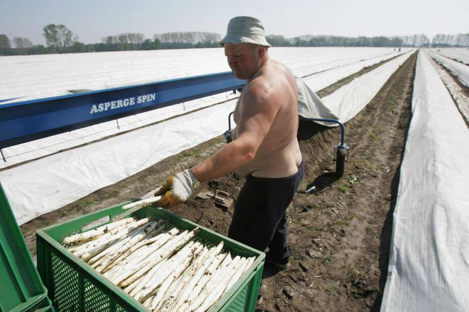 No. 6 PolandAverage annual hours: 1,893Average annual wages: $20,069Source: CNN Money Photo: JOHN MACDOUGALL/AFP/Getty Images