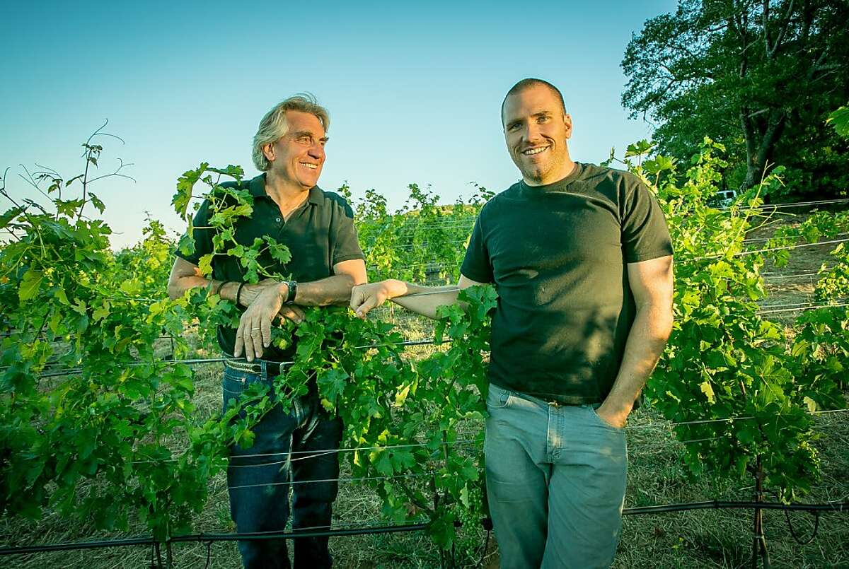 John Kongsgaard and his son Alex Kongsgaard in their vineyards in Napa, Calif., are seen on Wednesday, July 10th, 2013.