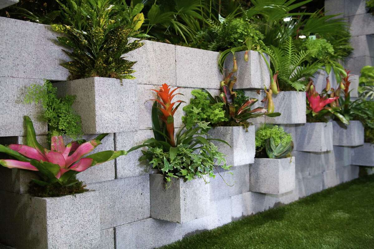 Olsen suggests using concrete blocks to create a decorative wall that can be planted with ivy and tropical plants.