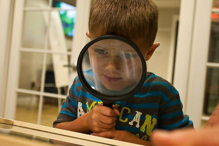 "As part of ""National Moth Week"" Jason Campbell, 4, of Hull, Texas, gets intrigued by looking at the different kinds of Moths through a magnifying glass at the Trinity River National Wildlife Refuge in Liberty, Texas, on Saturday, July 20, 2013.  (AP Photo/The Courier, Amanda Cain) Photo: Amanda Cain, Associated Press"
