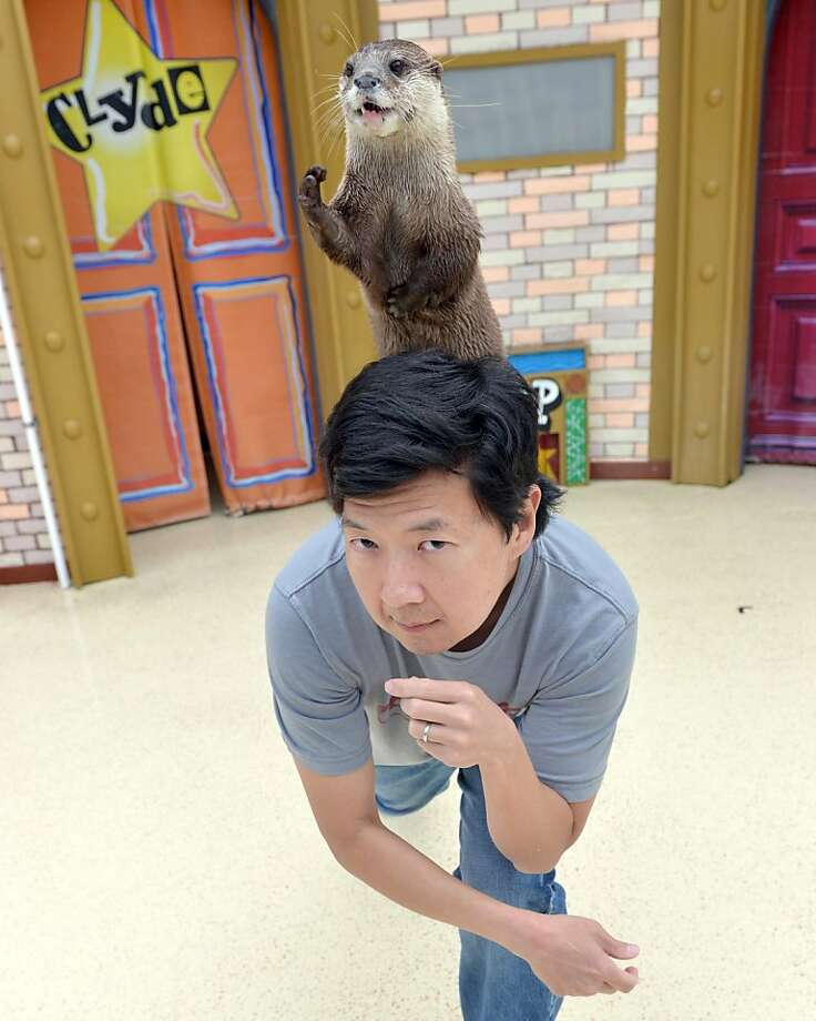 "'Hangover' actor shows his otter side: O.P. climbs over Ken Jeong (""The Hangover Part III,"" ""Turbo"") for a publicity photo at SeaWorld San Diego. O.P is an Asian small-clawed river otter. Photo: Mike Aguilera, Getty Images"