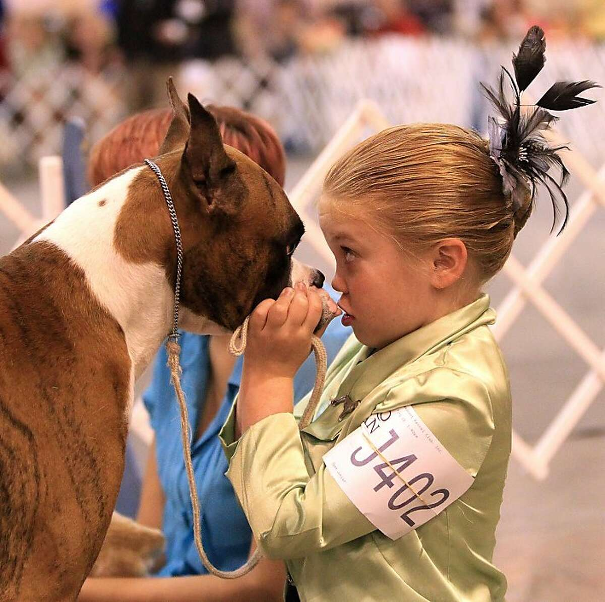 Don't jump on the judges, don't chase the other dogs, don't mark your territory ... Ten-year-old Jordyn Groves gives Rio a last-minute pep talk before they step into the ring in the Open Junior class judging at the Reliant Park World Series of Dog Shows in Houston.