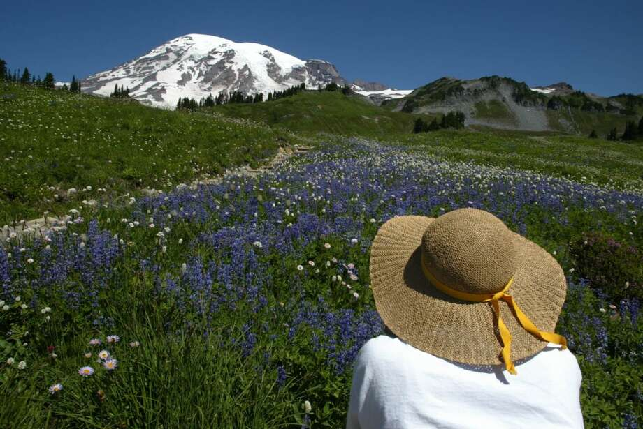 Love: Wildflowers at Mt. Rainier and all the beautiful places nearby to hike and camp in the summer.