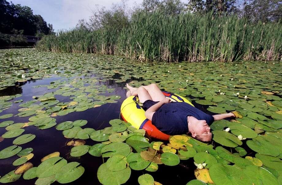 ... float, and ... .   (Photo: Arboretum).