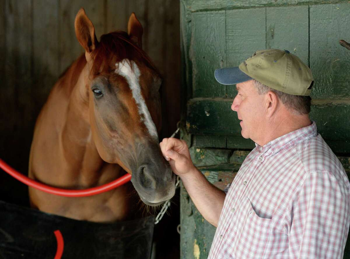 Champion Wise Dan spends a moment with his trainer Charley LoPrestiMonday morning, July, 22, 2013, at Saratoga Race Course in Saratoga Springs, N.Y. (Skip Dickstein/Times Union)