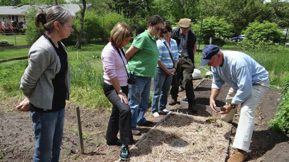 Gardener Eric Friske, right, shown at Drew Park's community garden earlier this year, will be on hand Saturday to lead tours of the plots and discuss backyard farming during a program sponsored by Fairfield Woods Branch LIbrary. Photo: File Photo / Fairfield Citizen