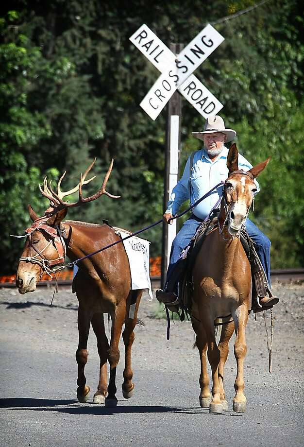 "At least it doesn't have to carry the chunky guy: At the Mule Mania Parade in Dayton, Wash., a mule wears a rack of antlers and a ""Wolf Bait"" sign, which apparently passes for humor in Dayton, Wash. Photo: Jeff Horner, Associated Press"
