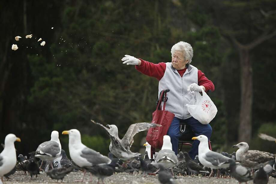 Chung Lam of San Francisco draws a crowd of squawkers as she feeds birds at Spreckels Lake at Golden Gate Park. Photo: Lea Suzuki, The Chronicle