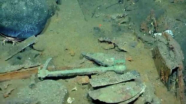 Items and sea life found in a Gulf shipwreck being explored by Texas A&M University at Galveston research scientists and  National Oceanic and Atmospheric Administration experts.