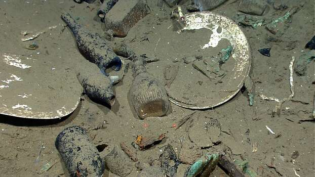 Items and sea life found in a Gulf shipwreck being explored by Texas A&M University at Galveston research scientists and National Oceanic and Atmospheric Administration experts