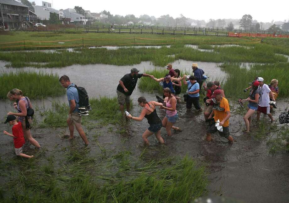 People cross the marsh in the pouring rain after watching wild ponies during their annual swim from Assateague Island to Chincoteague on July 24, 2013 in Chincoteague, Virginia. Every year the wild ponies are rounded up on the national wildlife refuge to be auctioned off by the Chincoteague Volunteer Fire Company. Photo: Mark Wilson, Getty Images / 2013 Getty Images