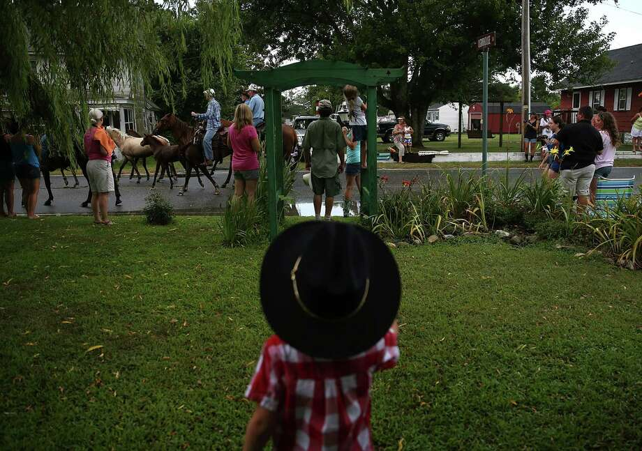 Wearing a cowboy hat Owen Waterfield watches as wild ponies are herded down the street toward the fairgrounds after they swam across the Assateague Channel during their annual swim from Assateague Island to Chincoteague on July 24, 2013 in Chincoteague, Virginia. Every year the wild ponies are rounded up on the national wildlife refuge to be auctioned off by the Chincoteague Volunteer Fire Company. Photo: Mark Wilson, Getty Images / 2013 Getty Images