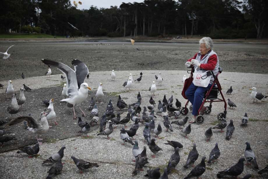 Chung Lam of San Francisco sits on her walker as she feeds birds at Spreckels Lake on Tuesday, July 23, 2013 in San Francisco, Calif. Photo: Lea Suzuki, The Chronicle